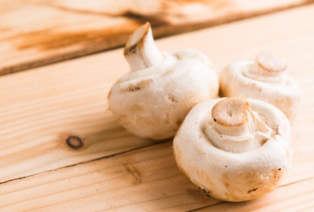 Manger des champignons pendant la grossesse : est-ce possible enceinte