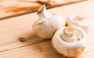 Manger des champignons pendant la grossesse : possible ou pas ?